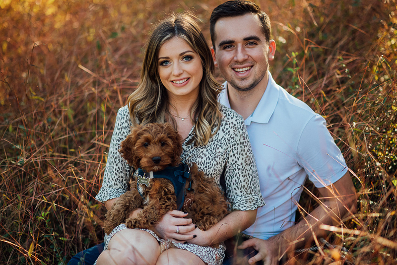 couple sitting in a field with a puppy, ©Celladora Photography + Video