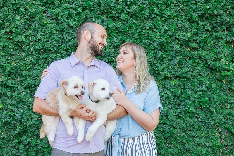 engagement photo ideas, couple holding dogs in front of vine covered wall | ©Charleston Photo Art