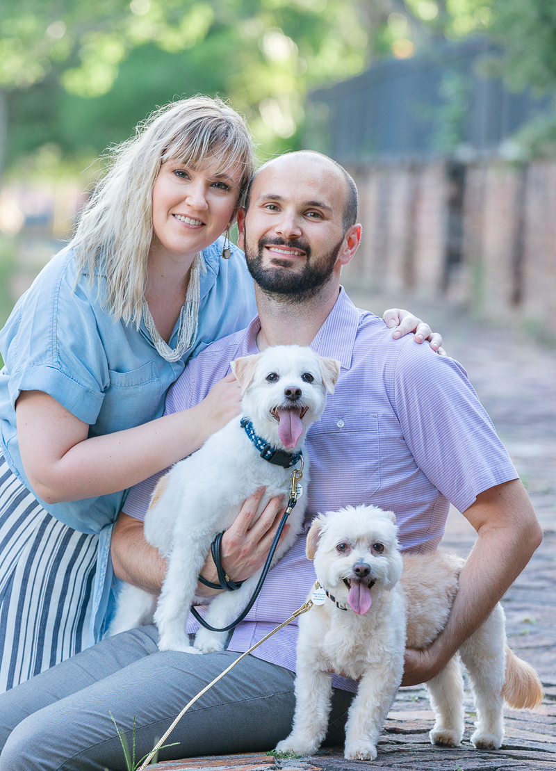 cute couple and their small dogs, Maltese/Terrier mixes | ©Charleston Photo Art