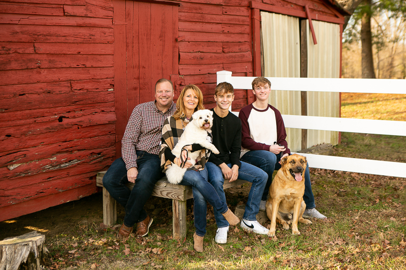 dog-friendly family photos at farm, Westie, Mastiff mix   ©Mandy Whitley Photography. Daisy, MO