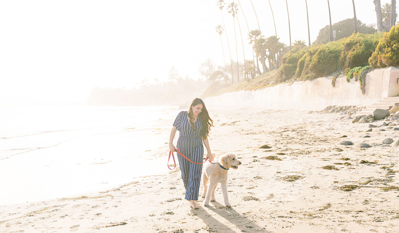 woman walking her dog   Butterfly Beach   © Fig + Willows Studio
