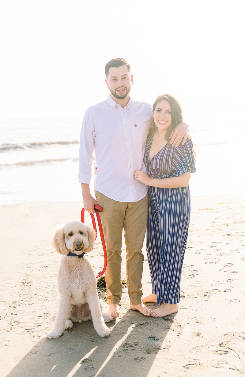 dog-friendly Butterfly Beach engagement session   © Fig + Willows Studio