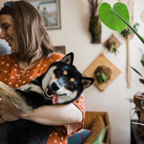 Happy Tails:  Maki the Shiba Inu | Portland, Oregon