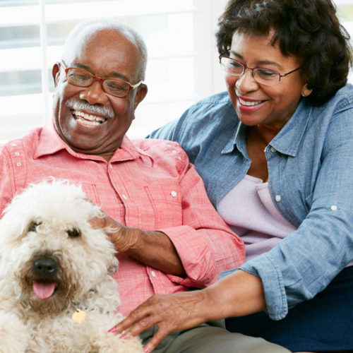 Dogs Living in Assisted Living Facilities