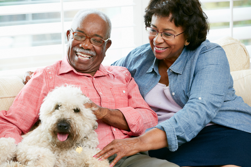 older couple petting their dog on the couch