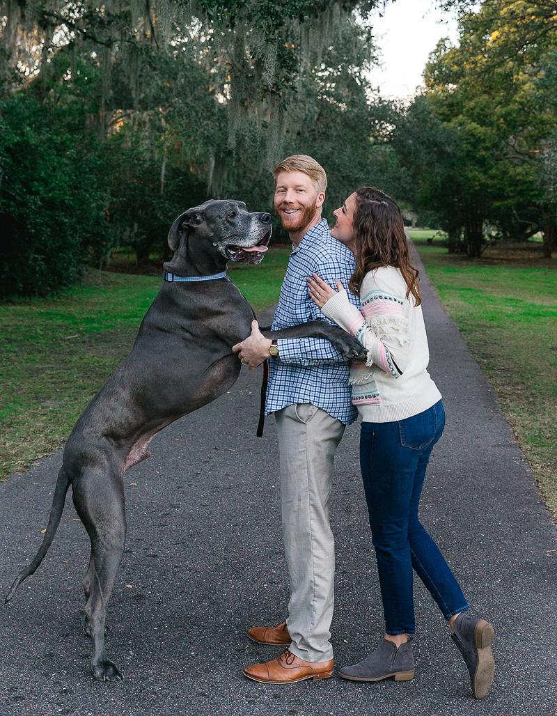 Great Dane standing on back legs, family hug   ©Charleston Photo Art