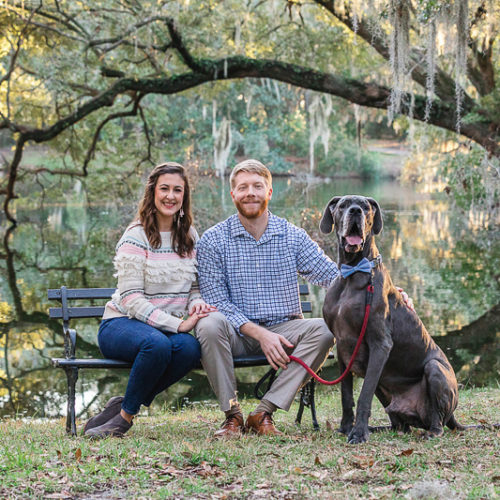 Happy Tails:  Blue the Great Dane | Charleston, SC