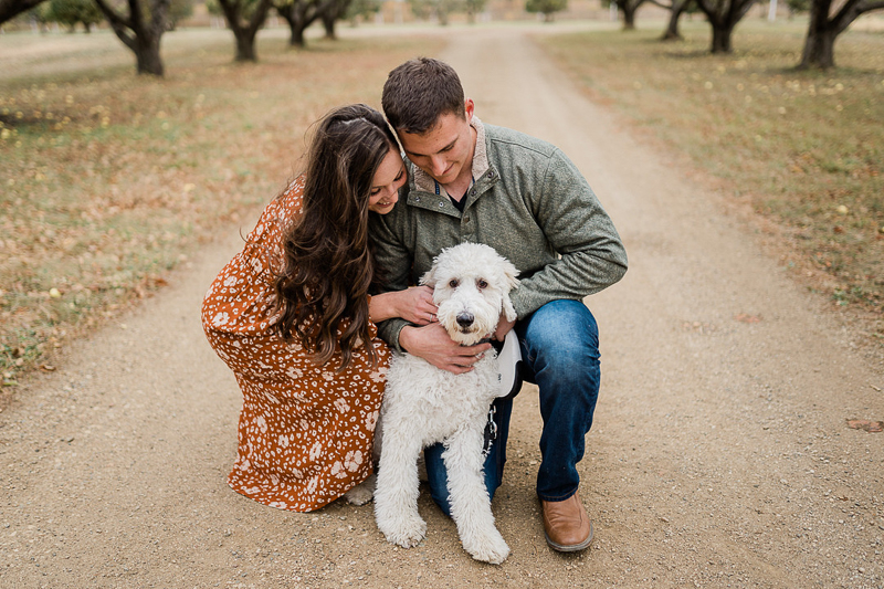 fall family photos with dog in orchard