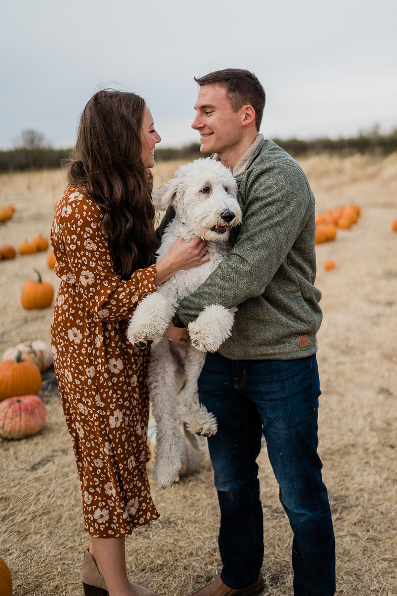 fall family photos with dog in pumpkin patch   ©Erica Jane Photography