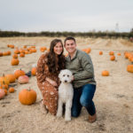 Happy Tails:  Ari the Goldendoodle | Sioux Falls, SD